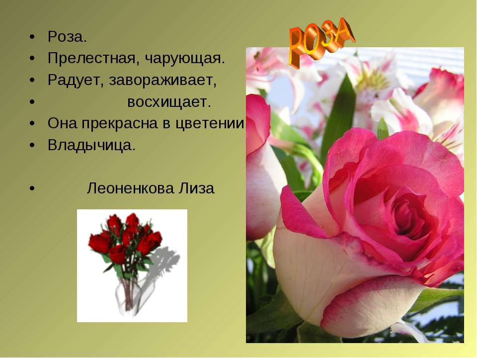 Роза. Прелестная, чарующая. Радует, завораживает, восхищает. Она прекрасна в ...