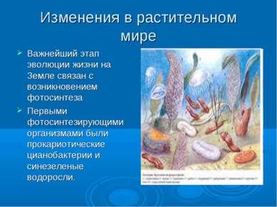 Изменения в растительном мире Важнейший этап эволюции жизни на Земле связан с...