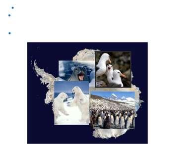 В Антарктиде зафиксирована самая низкая температура на Земле -89,2°С. Из-за о...