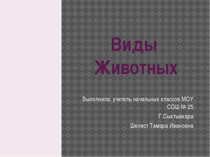 Виды Животных Выполнила: учитель начальных классов МОУ СОШ № 25 Г.Сыктывкара ...