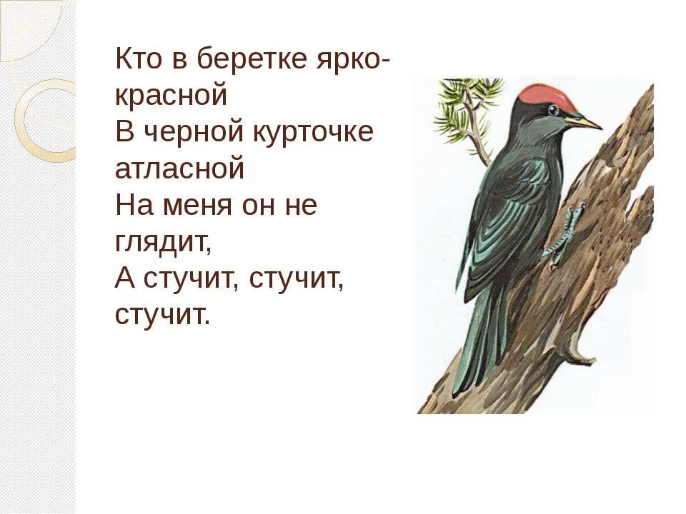 Кто в беретке ярко-красной В черной курточке атласной На меня он не глядит, А...