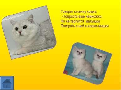 Говорит котенку кошка: -Подрасти еще немножко. Но не терпится малышке Поиграт...