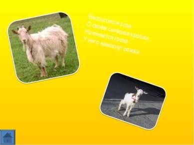 Беспокоится коза О своём сынишке-крошке: Начинается гроза- У него намокнут ро...