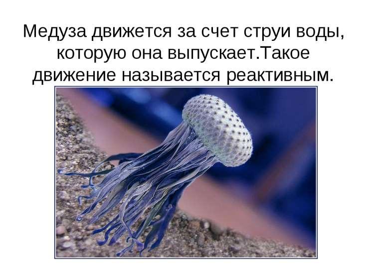 Медуза движется за счет струи воды, которую она выпускает.Такое движение назы...