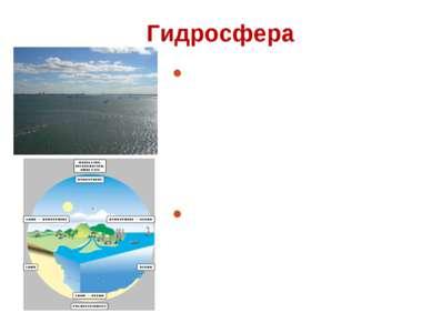 Гидросфера Гидросфера - водная оболочка Земли, включающая все воды, находящие...
