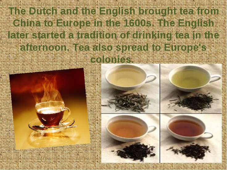 The Dutch and the English brought tea from China to Europe in the 1600s. The ...