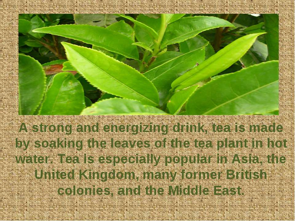 A strong and energizing drink, tea is made by soaking the leaves of the tea p...
