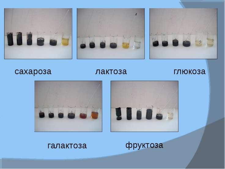 сахароза лактоза глюкоза галактоза фруктоза