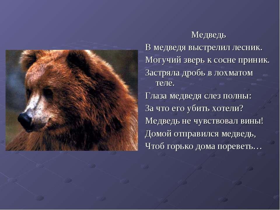 Медведь В медведя выстрелил лесник. Могучий зверь к сосне приник. Застряла др...