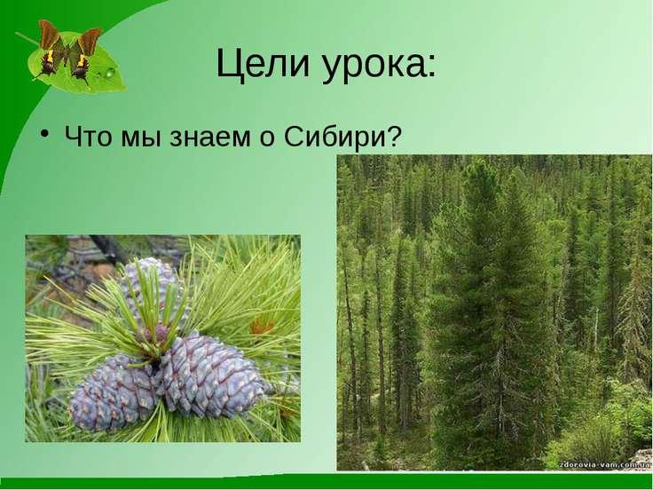 Цели урока: Что мы знаем о Сибири?