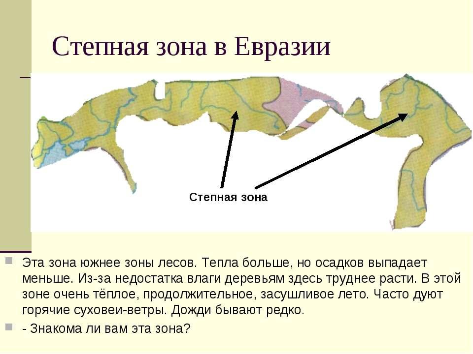 Степная зона в Евразии Эта зона южнее зоны лесов. Тепла больше, но осадков вы...
