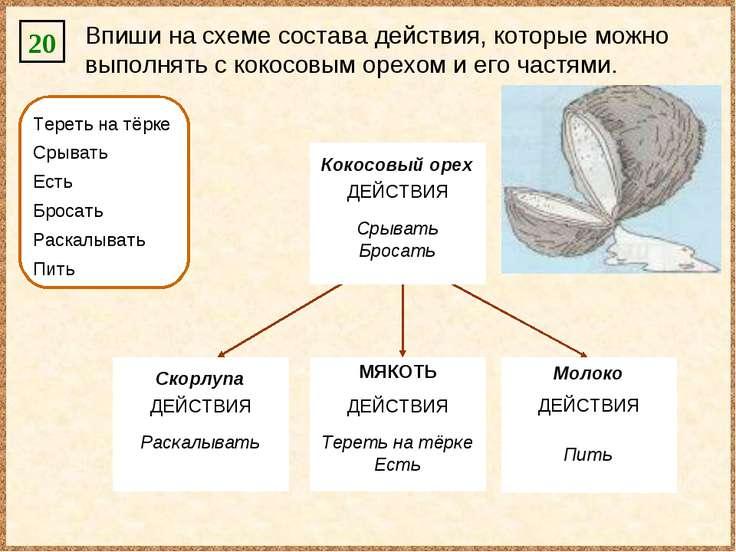 20 Впиши на схеме состава действия, которые можно выполнять с кокосовым орехо...