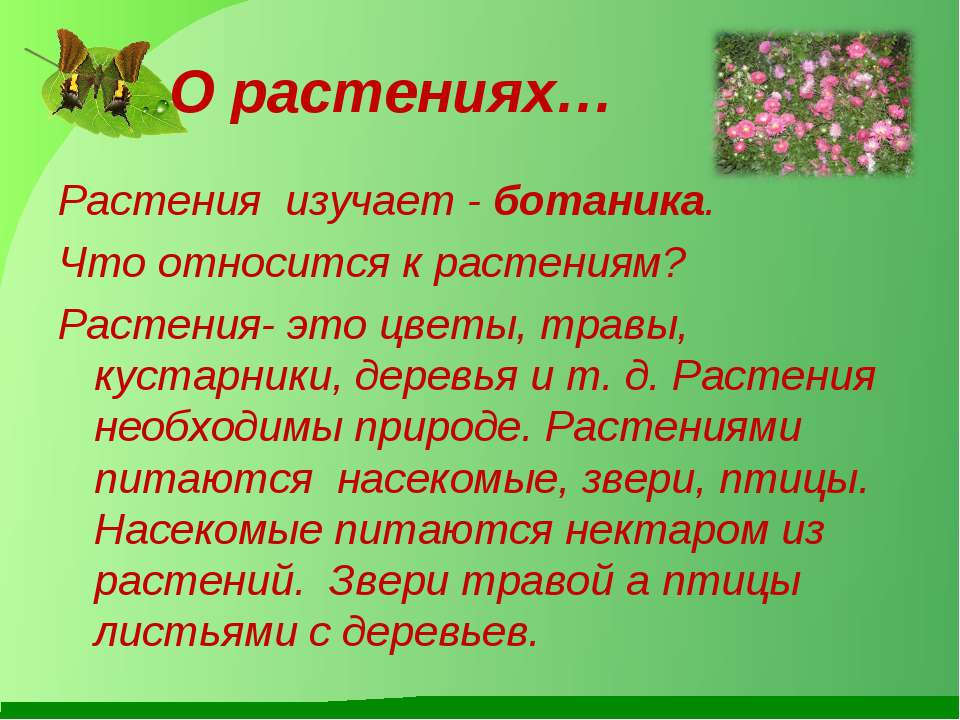 О растениях… Растения изучает - ботаника. Что относится к растениям? Растения...