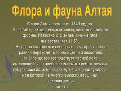 Флора Алтая состоит из 1840 видов. В состав её входят высокогорные, лесные и ...