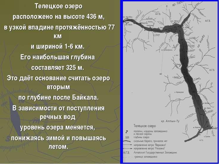Телецкое озеро расположено на высоте 436 м, в узкой впадине протяжённостью 77...