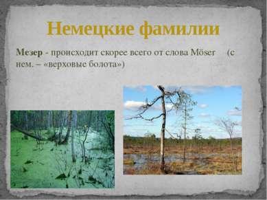 Мезер - происходит скорее всего от слова Möser (с нем. – «верховые болота») Н...