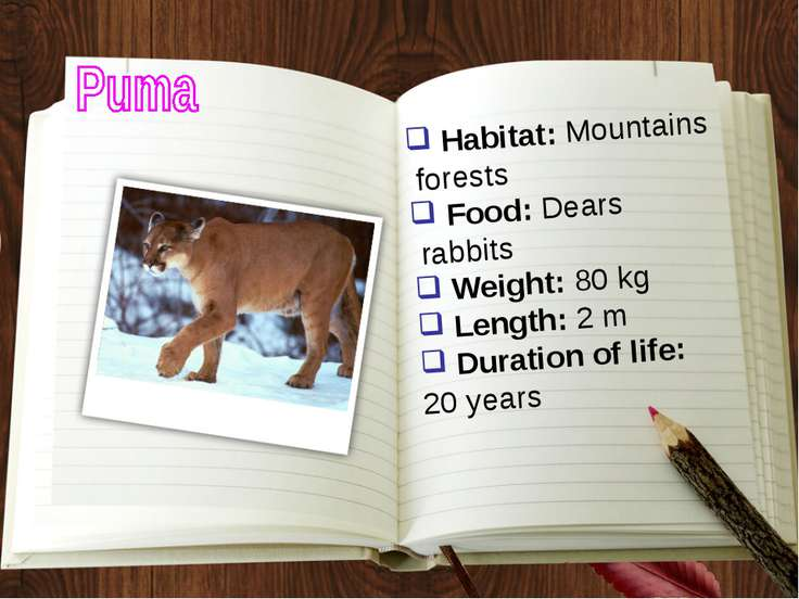 Habitat: Mountains forests Food: Dears rabbits Weight: 80 kg Length: 2 m Dura...