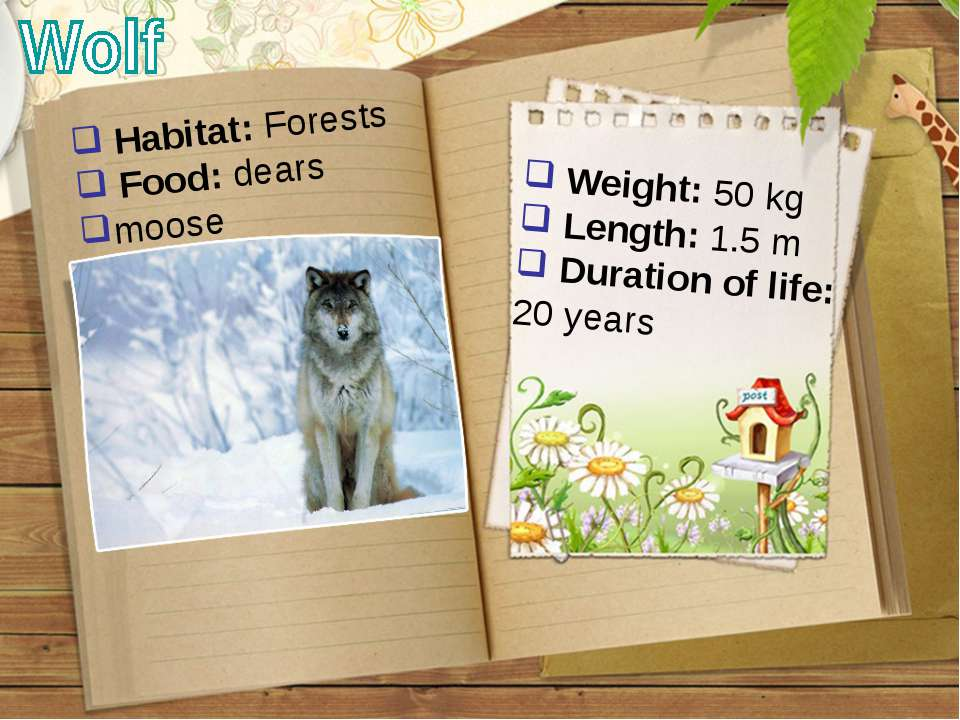 Weight: 50 kg Length: 1.5 m Duration of life: 20 years Habitat: Forests Food:...