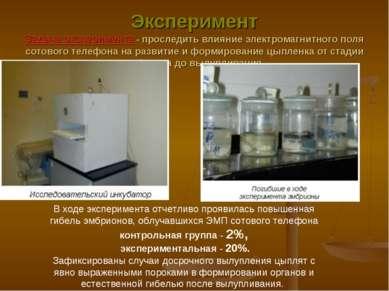 Эксперимент Задача эксперимента - проследить влияние электромагнитного поля с...