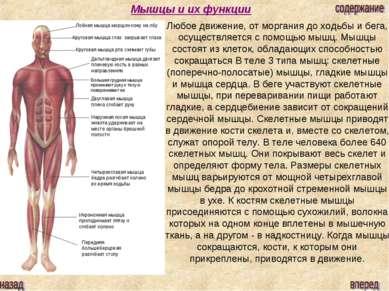 Мышцы и их функции Лобная мышца морщин кожу на лбу Круговая мышца глаз закрыв...