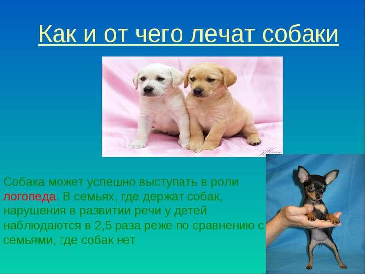 Как и от чего лечат собаки Собака может успешно выступать в роли логопеда. В ...