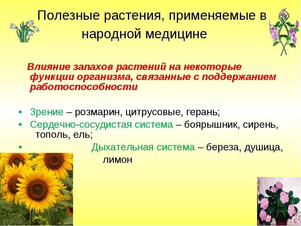 Полезные растения, применяемые в народной медицине Влияние запахов растений н...