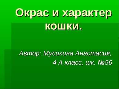 Окрас и характер кошки. Автор: Мусихина Анастасия, 4 А класс, шк. №56