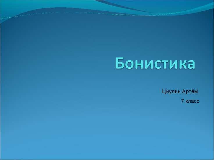 Циулин Артём 7 класс