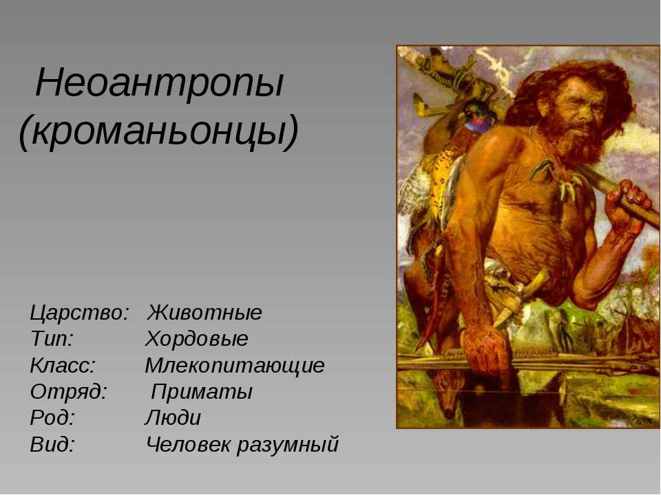 Неоантропы (кроманьонцы) Царство: Животные Тип: Хордовые Класс: Млекопитающие...