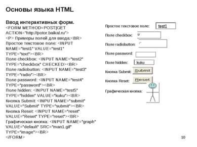 * Основы языка HTML Простое текстовое поле: Поле checkbox: Поле radiobutton: ...