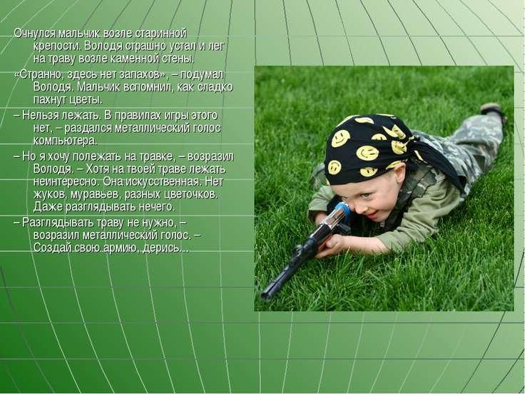 Очнулся мальчик возле старинной крепости. Володя страшно устал и лег на траву...