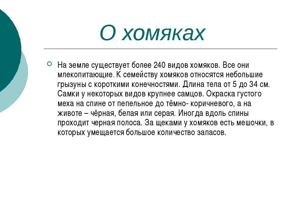 О хомяках На земле существует более 240 видов хомяков. Все они млекопитающие....