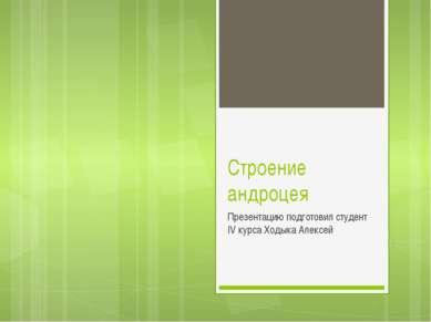 Строение андроцея Презентацию подготовил студент IV курса Ходыка Алексей