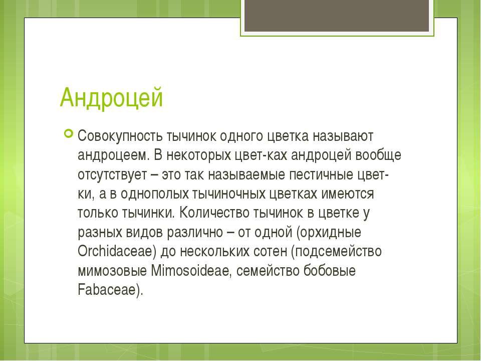 Андроцей Совокупность тычинок одного цветка называют андроцеем. В некоторых ц...