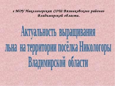 « МОУ Никологорская СОШ Вязниковского района» Владимирской области.