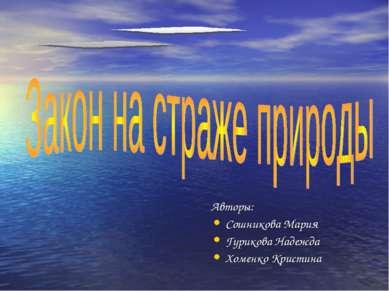 Авторы: Сошникова Мария Гурикова Надежда Хоменко Кристина
