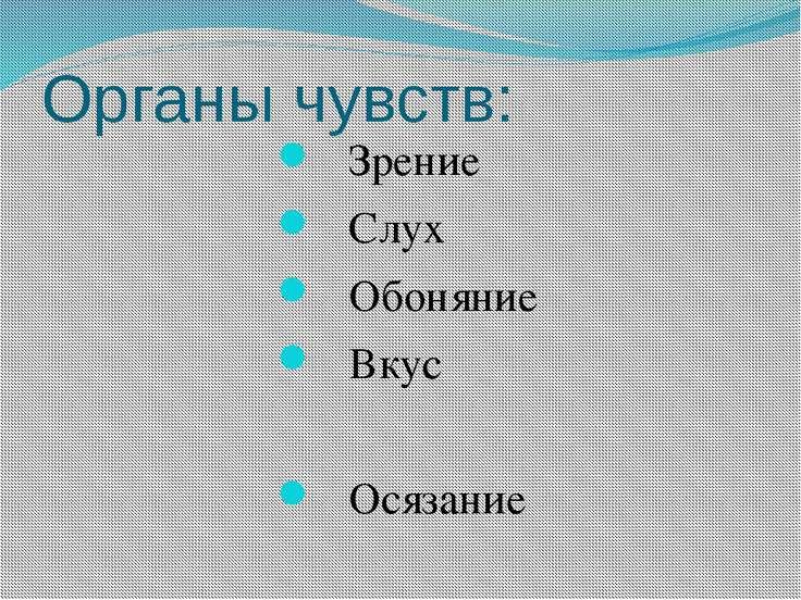 Органы чувств: Зрение Слух Обоняние Вкус Осязание