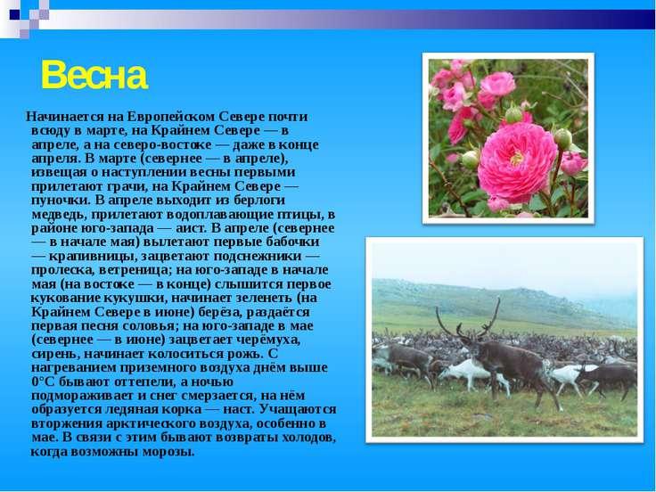 Весна Начинается на Европейском Севере почти всюду в марте, на Крайнем Севере...