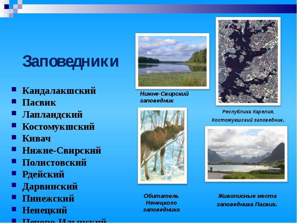 Заповедники Кандалакшский Пасвик Лапландский Костомукшский Кивач Нижне-Свирск...