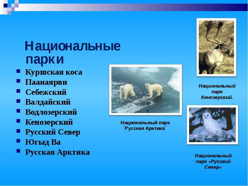 Национальные парки Куршская коса Паанаярви Себежский Валдайский Водлозерский ...