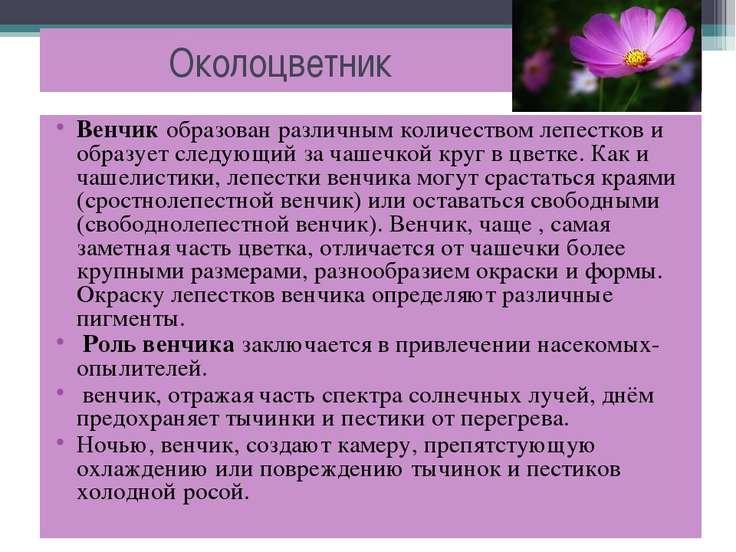 Околоцветник Венчик образован различным количеством лепестков и образует след...
