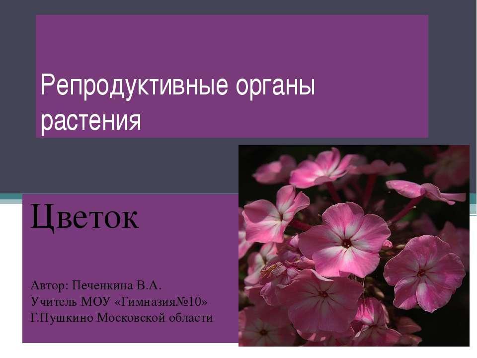 Репродуктивные органы растения Цветок Автор: Печенкина В.А. Учитель МОУ «Гимн...