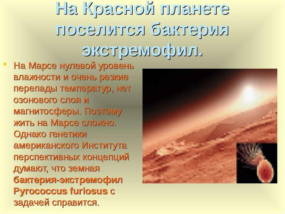 На Красной планете поселится бактерия экстремофил. На Марсе нулевой уровень в...
