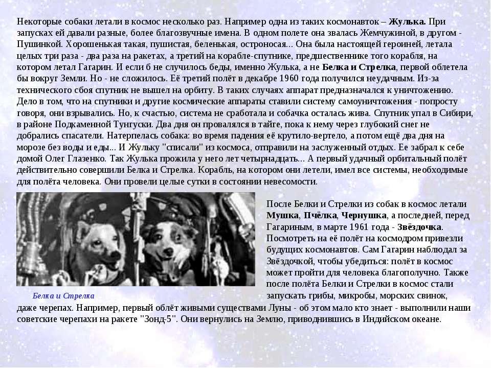 Некоторые собаки летали в космос несколько раз. Например одна из таких космон...