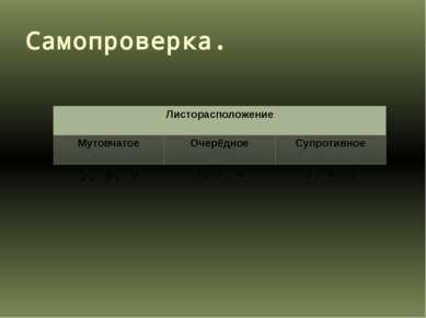 Самопроверка. Листорасположение Мутовчатое Очерёдное Супротивное 5,8, 9 1,3, ...