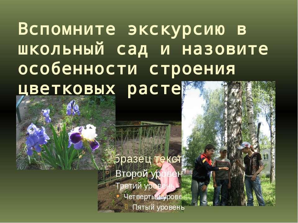 Вспомните экскурсию в школьный сад и назовите особенности строения цветковых ...