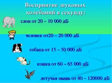 Восприятие звуковых колебаний в секунду: слон от 20 – 10 000 дБ человек от20 ...
