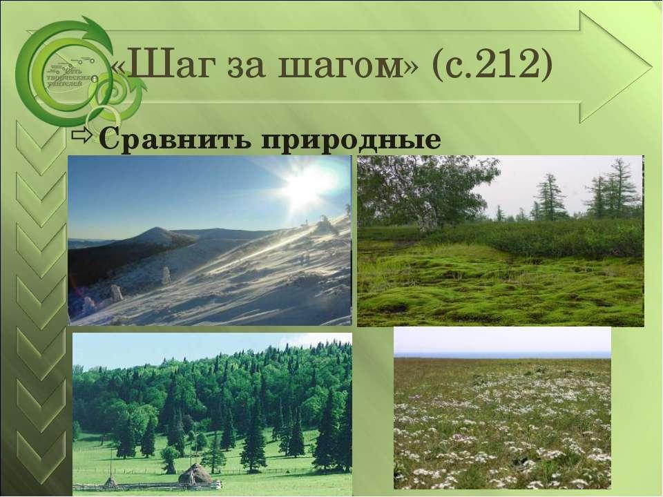 «Шаг за шагом» (с.212) Сравнить природные зоны