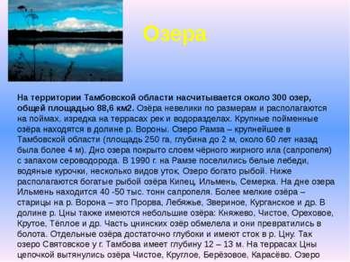 На территории Тамбовской области насчитывается около 300 озер, общей площадью...