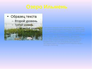 Озеро Ильмень Озеро имеет площадь около 150 гектаров, располагается в трёх ки...